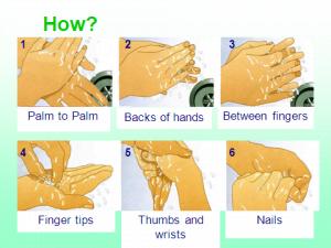 The Six Steps of Hand Hygiene