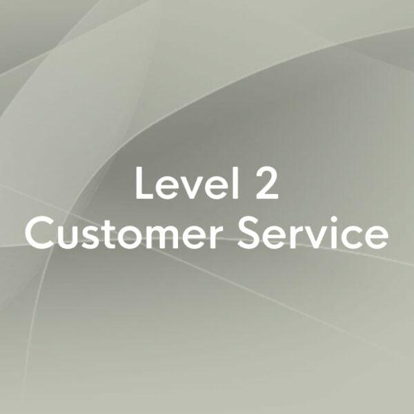 Level 2 customer service
